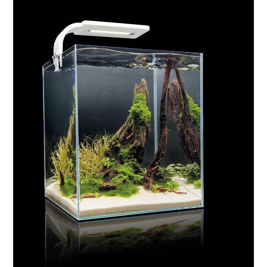 aquael shrimpset smart 30 wei nanoaquarium komplettset 30 liter krueger aquaristik der. Black Bedroom Furniture Sets. Home Design Ideas