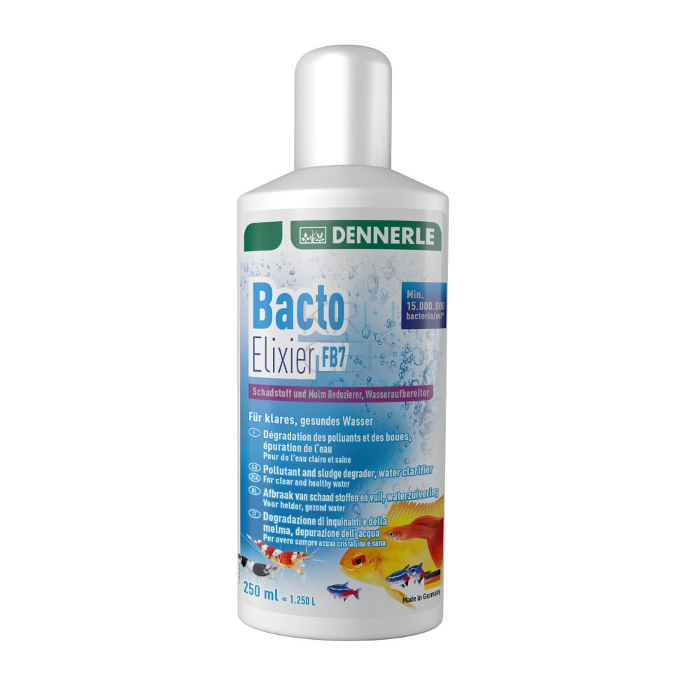 Dennerle Bacto Elixier FB7 - 250 ml